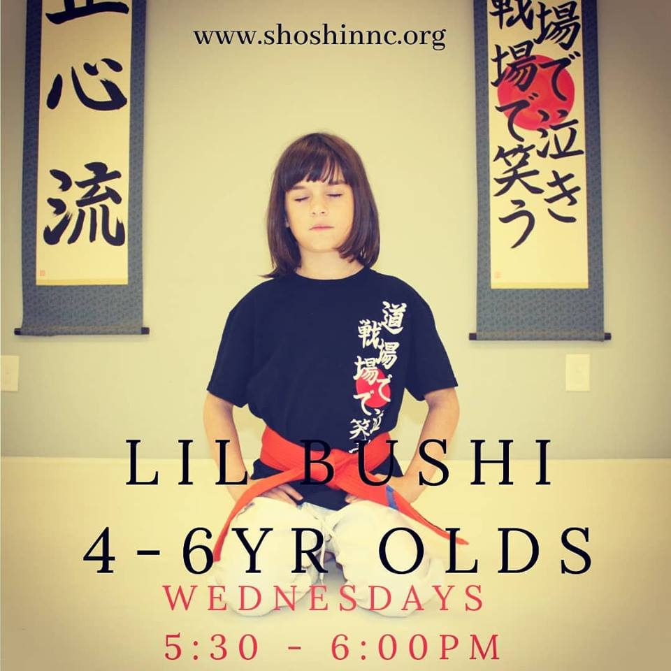 Little Bushi Kids Class – Age 4 – 6
